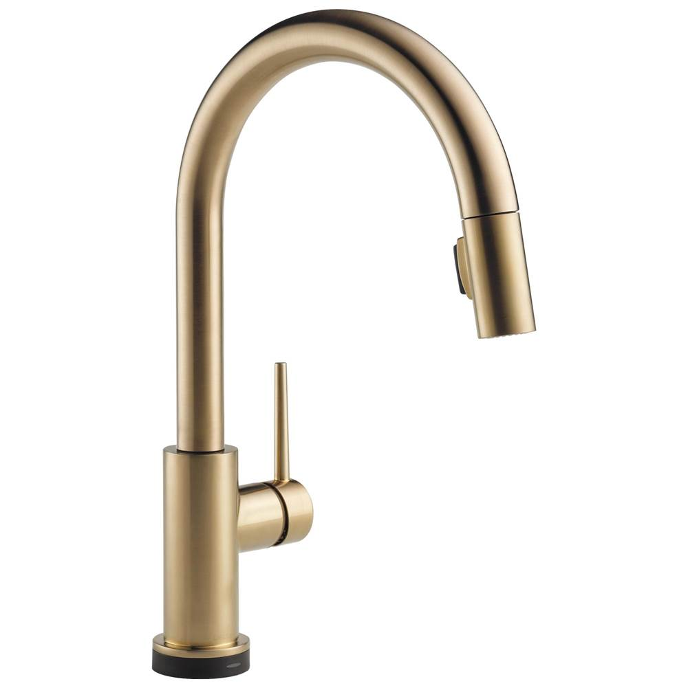 Delta Faucet Trinsic: VoiceIQ™ Single-Handle Pull-Down Kitchen Faucet with Touch2O® Technology