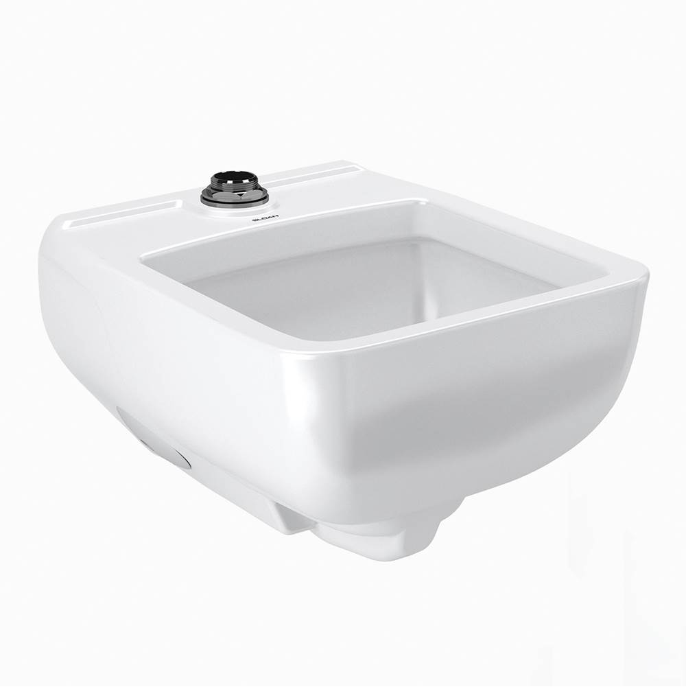 Sloan Ss3200 Wall Hung Healthcare Service Sink